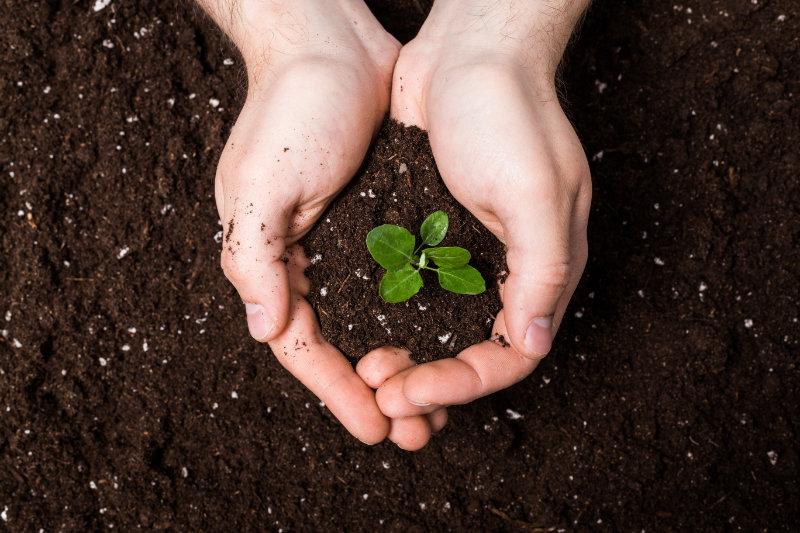 Vente de terre végétale